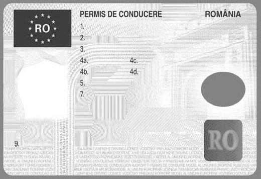 Fata I a permisului de conducere | numar permis de conducere
